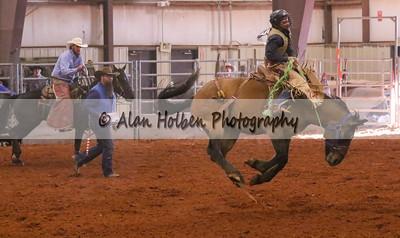 Saddle Bronc #17 (1 of 1)