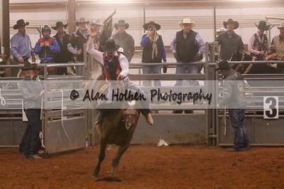 Saddle Bronc #3 (1 of 1)