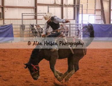 Saddle Bronc #2 (1 of 1)