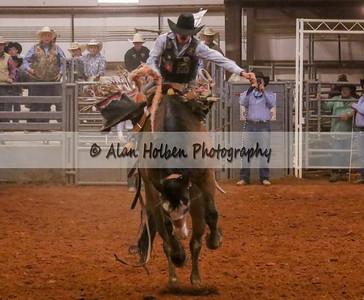 Saddle Bronc #23 (1 of 1)
