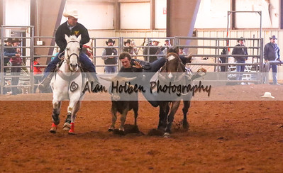 Steer Wrestling #9 (1 of 1)