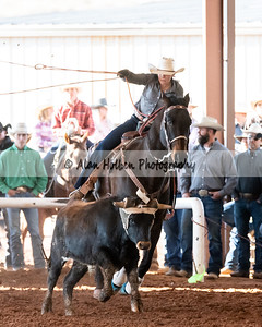 Rodeo_20191123_5454