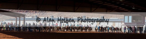 Rodeo_20191123_6135-Pano