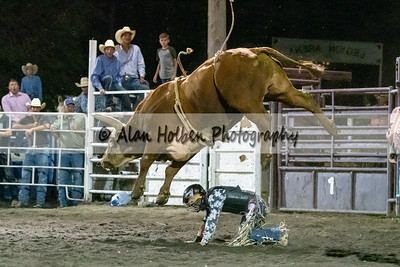 Rodeo_20190727_0968