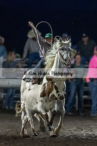 Rodeo_20190727_0734