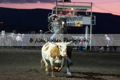 Rodeo_20190727_0703