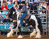 2019_June8_Jurupa Valley Rodeo_P2_Sheriff Chad Bianco_by Andrea Kaus-0345