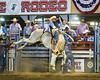 2019_April26_Lakeside Rodeo-CA_BB_Luke Wozney_on Bar T Rodeos Head Honcho_by Andrea Kaus-0121