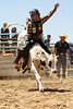 2019_June9_Scott Mendes_Bull Riding Camp-0124
