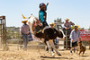 2019_June9_Scott Mendes_Bull Riding Camp-0144