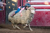 2019_May24_Valley Center Rodeo-0459
