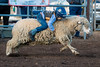 2019_May24_Valley Center Rodeo-0373