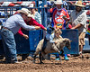 2019_Aug 10_Ventura County Fair Rodeo_P1-0204