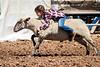 2019_Aug 10_Ventura County Fair Rodeo_P1-0302