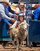2019_Aug 11_Ventura County Fair Rodeo_P3-0129