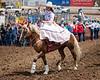 2019_Aug 11_Ventura County Fair Rodeo_P3-0054
