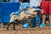 2019_Aug 11_Ventura County Fair Rodeo_P4-0166