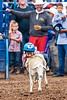 2019_Aug 11_Ventura County Fair Rodeo_P4-0181