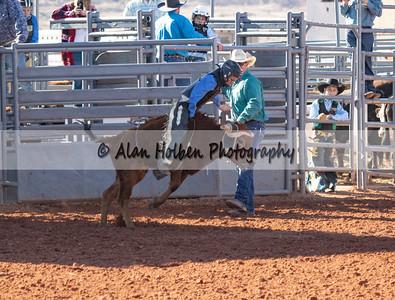 Bull Riding #3 (1 of 1)