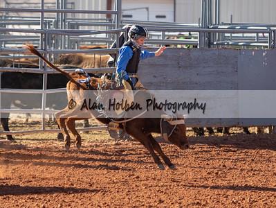 Bull Riding #4 (1 of 1)