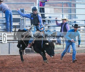 Saddle Bronc Riding #5 (1 of 1)