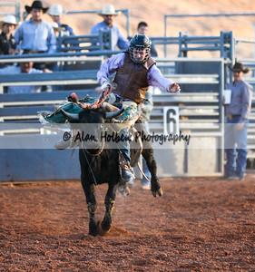 Saddle Bronc Riding #1 (1 of 1)