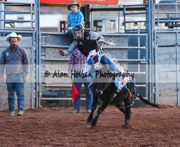 Saddle Bronc Riding #8 (1 of 1)