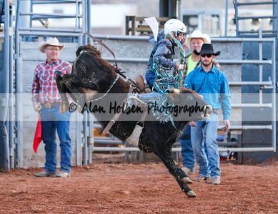 Saddle Bronc Riding #12 (1 of 1)