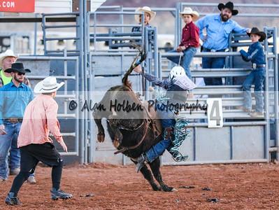 Saddle Bronc Riding #14 (1 of 1)