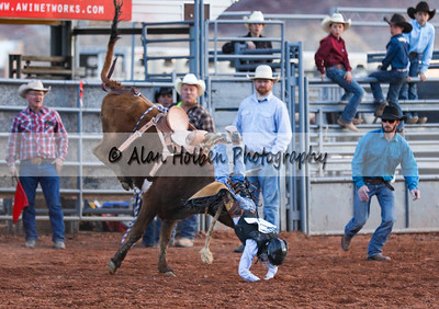 Saddle Bronc Riding #11 (1 of 1)