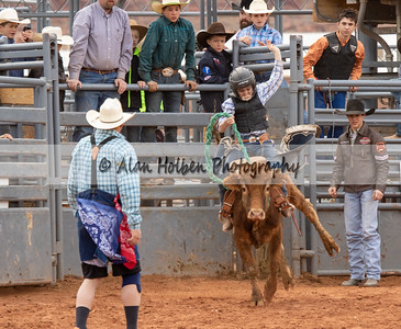 Saddle Bronc #2 (1 of 1)