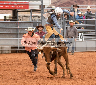 Saddle Bronc #5 (1 of 1)