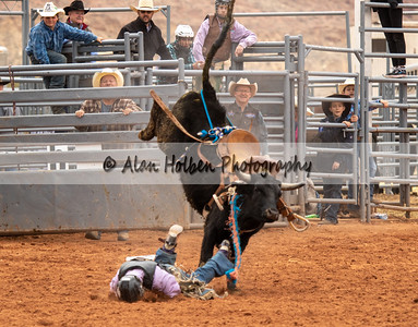 Saddle Bronc #7 (1 of 1)