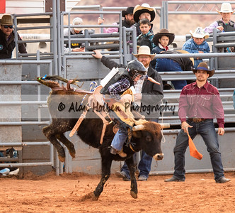 Saddle Bronc #1 (1 of 1)