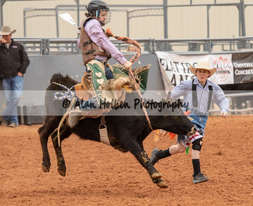 Saddle Bronc #10 (1 of 1)