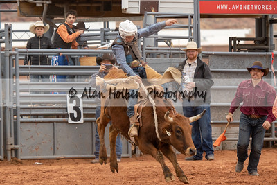 Saddle Bronc #4 (1 of 1)