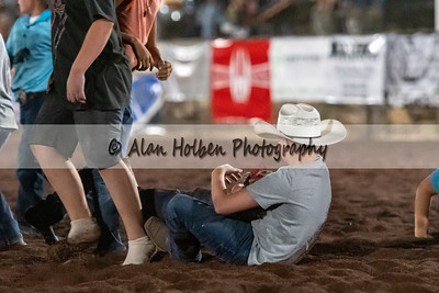 Rodeo_20200731_1647