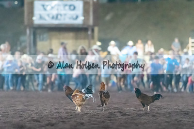 Rodeo_20200731_1614