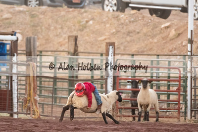 Rodeo_20200731_0759