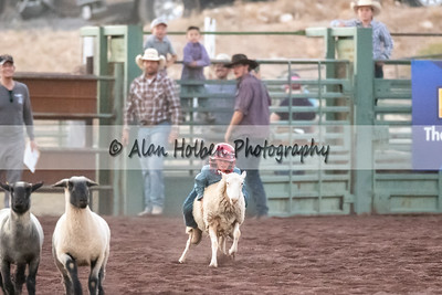 Rodeo_20200731_0835