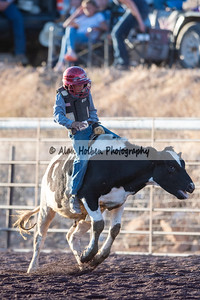 Rodeo_20200801_0227