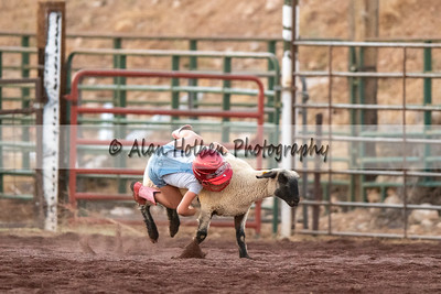Rodeo_20200801_0969
