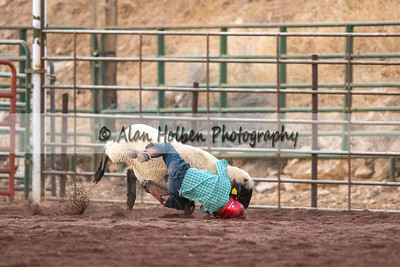 Rodeo_20200801_0986