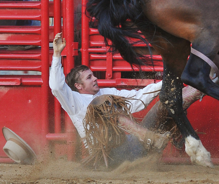 Logan Stetson falls off his ride in Saddle Bronc Riding during the Sheridan County Fair Match Bronc Riding competition Thursday at the Sheridan County Fairgrounds arena.(Justin Sheely/The Sheridan Press)