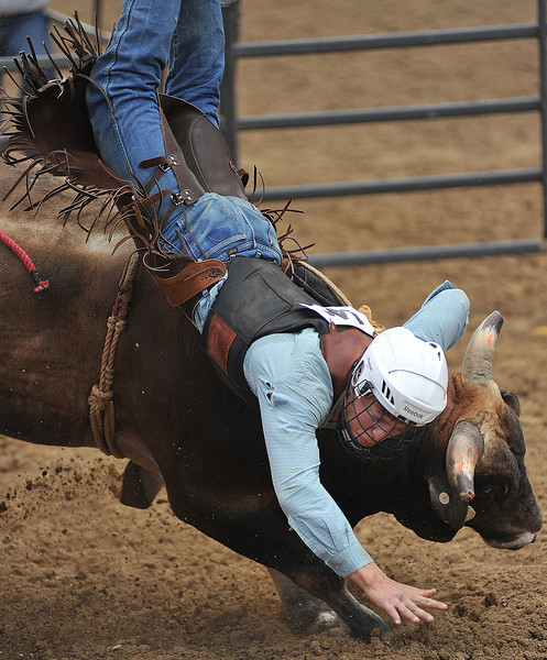 The bull wins the round as Lane Gibson tumbles off in the Bull Riding competition during the Sheridan County Rodeo Saturday afternoon at the Sheridan County Fairgrounds. (Justin Sheely/The Sheridan Press)