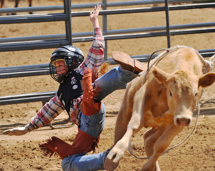 Dawson Richards hits the dirt in Junior Calf Riding during the Sheridan County Rodeo Saturday afternoon at the Sheridan County Fairgrounds. (Justin Sheely/The Sheridan Press)