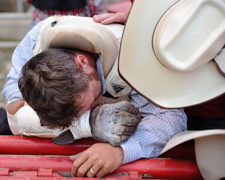 Brad Harris, of Itasca, Texas, recovers after falling off and getting stomped on by his horse in the Bareback Riding competition Thursday during the Sheridan-Wyo-Rodeo. Harris walked off the arena with no score. (Justin Sheely/The Sheridan Press)