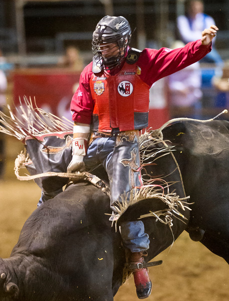 Bobby Welsh, of Gillette, Wyo., rides Little Ears in Friday night's Bull Riding competition during the Sheridan-Wyo-Rodeo at the Sheridan County Fairgrounds. Welsh is tied for the week's high score of 89. (Justin Sheely/The Sheridan Press)
