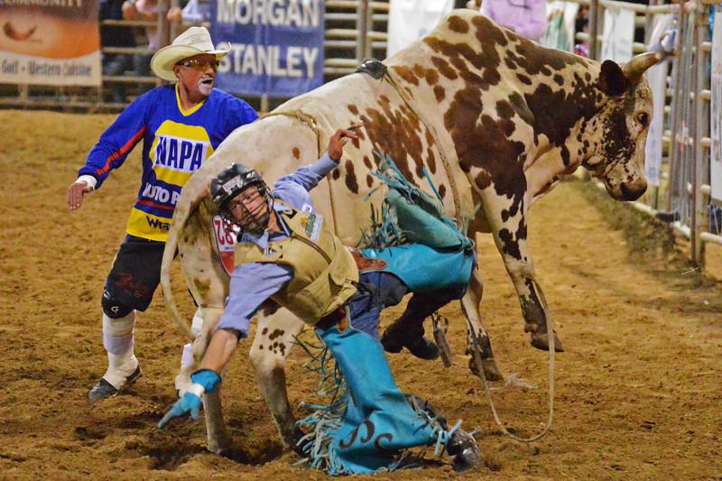 "Brett Stall of Detroit Lakes, Minn., dismounts after his ride on ""Ardimus Gordan"" Friday night at the Sheridan-Wyo-Rodeo. (Brad Estes/The Sheridan Press)"