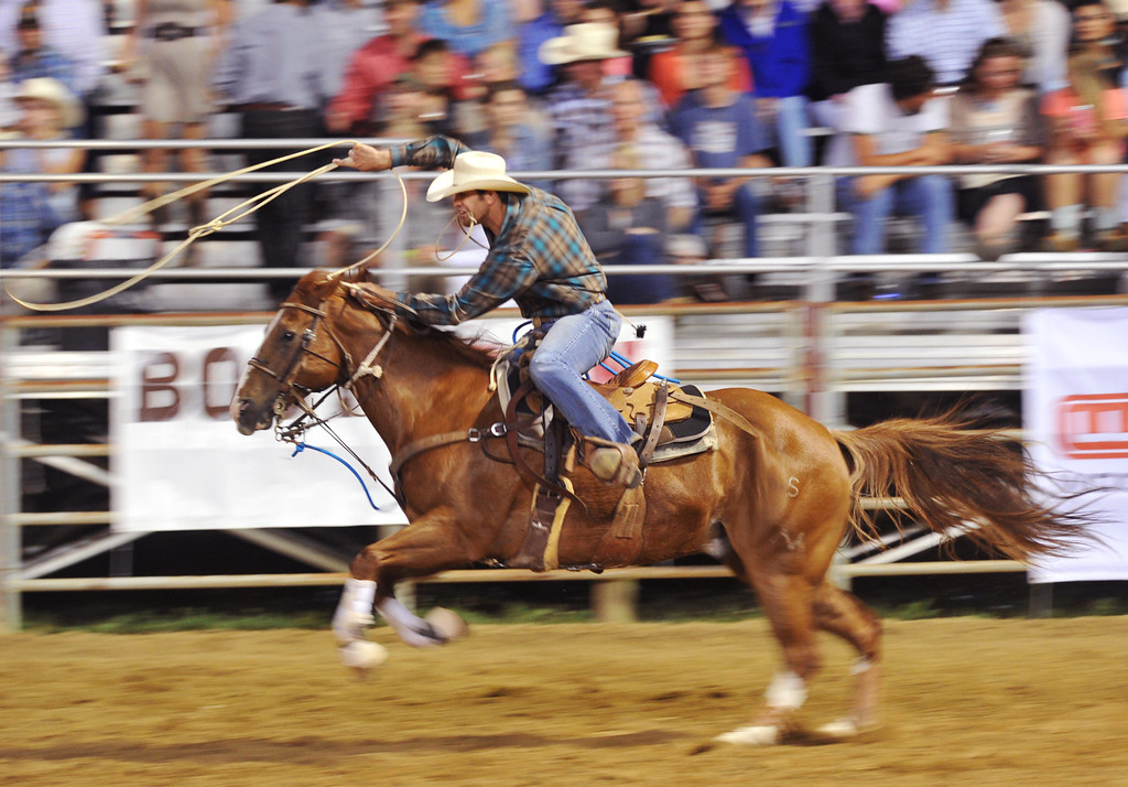 Rhen Richard, of Roosevelt, Utah, swings his rope as he rides his horse in Tie Down Roping in the Sheridan-Wyo-Rodeo performance Saturday at the Sheridan County Fairgrouds.(Justin Sheely/The Sheridan Press)